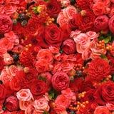 Fond sans joint de fleur Photo stock