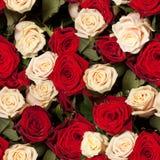 Fond sans joint de roses Photos stock