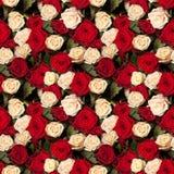 Fond sans joint de roses Images libres de droits