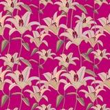 Fond sans joint floral Configuration de fleur décorative Se floral Photographie stock libre de droits