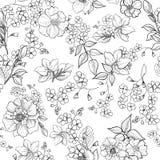 Fond sans joint floral Configuration de fleur Papier peint de Flourish illustration libre de droits