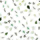 Fond sans joint floral de configuration Texture décorative de conception de ressort Photos stock