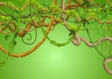 Fond sauvage tordu de branches de lianes illustration libre de droits