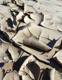Fond sec et criqué de boue Image stock