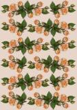 Fond sensible avec des guirlandes des roses oranges Image libre de droits