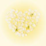Fond sensible de Valentine avec le coeur fait de pétales Image libre de droits