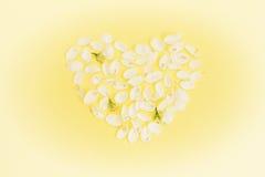 Fond sensible de Valentine avec le coeur fait de pétales Photos libres de droits