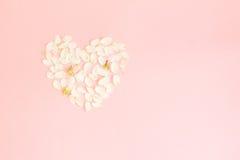 Fond sensible de Valentine avec le coeur fait de pétales Photos stock