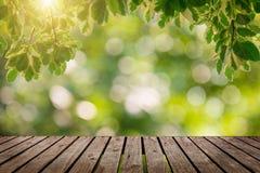 Fond simple en bois de bureau et de jardin Photos libres de droits