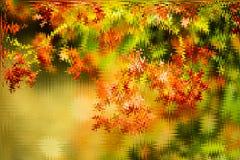 Fond teinté par style brillant vert, jaune et d'or abstrait d'hiver Fond rougeoyant avec le style de bokeh pour des salutations s image stock