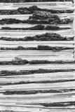 Fond texturisé abstrait de carton ondulé et d'écorce d'arbre Pékin, photo noire et blanche de la Chine photos stock
