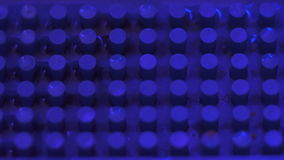 Fond texturisé bleu avec des lumières de club banque de vidéos
