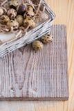 Fond texturisé de ressort avec de petits oeufs de caille Produits d'Eco Format horizontal Photographie stock libre de droits