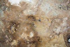 Fond texturisé de roche Photos libres de droits