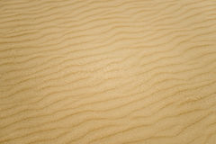 Fond texturisé de sable mou. Couleur jaune. Photo libre de droits