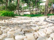 Fond texturisé de Seixo de pierres blanches de cailloux Photos libres de droits