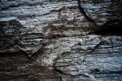 Fond texturisé de vieux mur en bois Images libres de droits