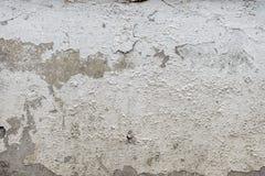Fond texturisé grunge de vieux plâtre criqué images libres de droits
