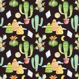 Fond tiré par la main de modèle sans couture tropical de cactus d'aquarelle Photo stock