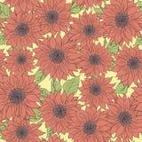 Fond tiré par la main de tournesols de modèle Rose de fleur, vert Produits d'emballage Photographie stock libre de droits