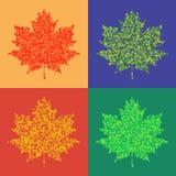 Fond tramé d'automne d'isolement par feuilles colorées d'érable Images libres de droits