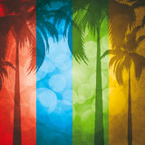Fond tropical Photo stock