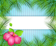Fond tropical avec des feuilles de palmier Image stock