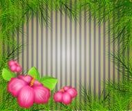 Fond tropical avec des feuilles de palmier Photo stock