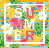 Fond tropical avec l'ananas, fleurs exotiques Lettres d'été Images libres de droits
