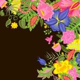 Fond tropical avec les fleurs exotiques Images stock