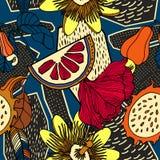 Fond tropical avec les plantes et les fruits exotiques illustration libre de droits
