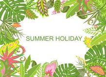 Fond tropical d'été avec les feuilles exotiques Photographie stock