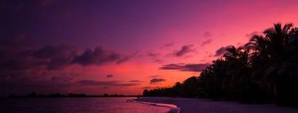 Fond tropical de coucher du soleil de plage Image stock