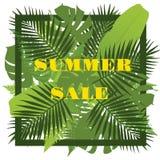 Fond tropical de feuilles Concept de vente d'été Images libres de droits