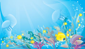 Fond tropical de mer Photos libres de droits