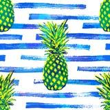 Fond tropical de modèle de vecteur sans couture avec l'ananas tiré par la main Images stock