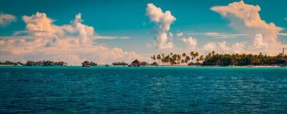 Fond tropical de plage de vintage Image stock