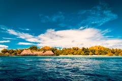 Fond tropical de plage de vintage Image libre de droits
