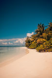 Fond tropical de plage de vintage Photographie stock libre de droits