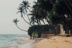 Fond tropical de vacances de vacances - plage idyllique de paradis Le Sri Lanka Photo libre de droits