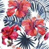 Fond tropical feuilles et usines tropicales d'aquarelle Fond peint à la main de verdure de jungle Photos stock