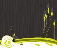 Fond végétal Photographie stock libre de droits