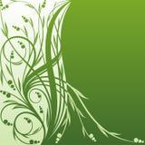 Fond vert Photos stock