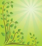 Fond vert avec des branchements Illustration de Vecteur