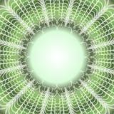 Fond vert avec le cadre décoratif de dentelle, l'espace vide pour le texte, message, l'autre élément graphique illustration stock