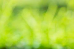Fond vert brouillé par abstrait Photo libre de droits