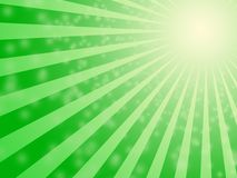 Fond vert d'ampoule du soleil Photo stock