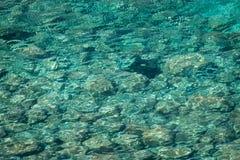 Fond vert d'eau de mer Image libre de droits