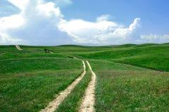 Fond vert de champ Photo libre de droits