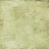 Fond vert de cru Image libre de droits